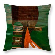 In Reflection Throw Pillow
