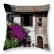 In Residence Throw Pillow
