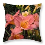 in search of our mothers gardens in search of our  in search of our mothers gardens throw pillow
