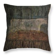 In Search Of The Story Throw Pillow