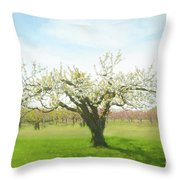 In Spring's Embrace Throw Pillow