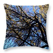 In Sunlight And In Shadow Throw Pillow