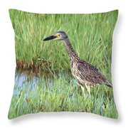 In Tall Grasses Throw Pillow
