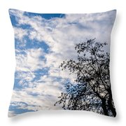 In That Quiet Earth - At Sunset Throw Pillow
