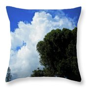 In The Anteroom Of The Mountain Gods 005 Throw Pillow