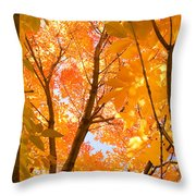In The Autumn Mood  Throw Pillow