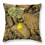 In The Autumn The Port Throw Pillow