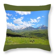 In The Back Country 2 Throw Pillow