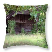 In The Back Woods Throw Pillow