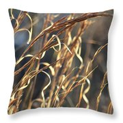 In The Beauty Of Morning Throw Pillow