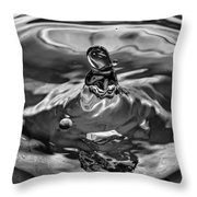 In The Beginning Bw Throw Pillow