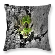 In The Cleft Of The Rock Throw Pillow