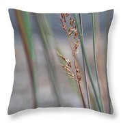 In The Company Of Blue - Throw Pillow