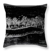 In The Dark Of The Night Throw Pillow