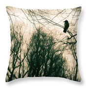 In The Day Throw Pillow