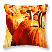 In The Days Still Left  Throw Pillow