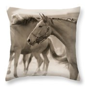 In The Dust Throw Pillow