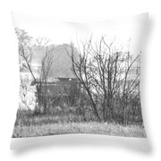 In The Dust Of The Harvest Throw Pillow