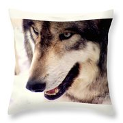 In The Eyes Of The Wolves Throw Pillow