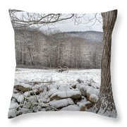 In The Field Throw Pillow