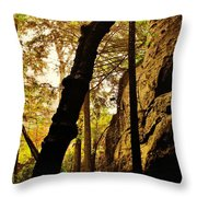 In The Gully Throw Pillow