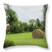 In The Hayfield  Throw Pillow