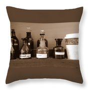 In The Lab Throw Pillow