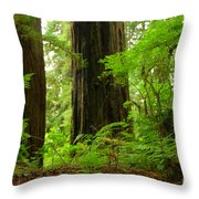 In The Land Of Giants Throw Pillow