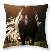 In The Last Rays Of Setting Sun Throw Pillow