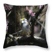 In The Light Of Morning Throw Pillow