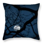 In The Light Of Night Throw Pillow