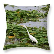 In The Lily Pads Throw Pillow