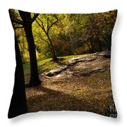 In The Magical Light 2 Throw Pillow