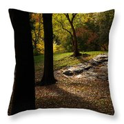 In The Magical Light Throw Pillow