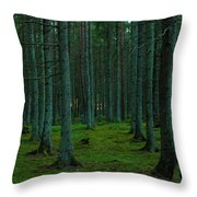 In The Middle Of The Forest Throw Pillow