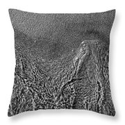 In The Moment Bw Three  Throw Pillow