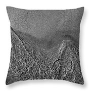 In The Moment Bw Two  Throw Pillow