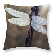 In The Morning Light Throw Pillow