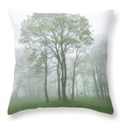 In The Morning03 Throw Pillow