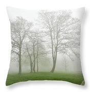In The Morning06 Throw Pillow
