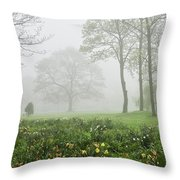 In The Morning10 Throw Pillow