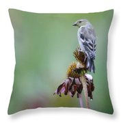 In The October Rain  Throw Pillow