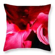 In The Pink 1 Throw Pillow