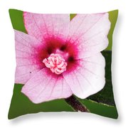 In The Pink Throw Pillow