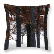 In The Presence Of Elders Throw Pillow