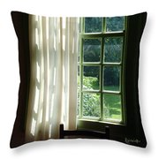 In The Quiet Of The Afternoon Throw Pillow