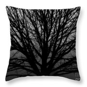 In Reach Of Mist Throw Pillow