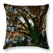 In The Shade Of A Florida Oak Throw Pillow