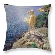 In The Skerries Throw Pillow