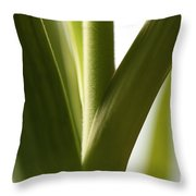 In The Spotlight Of Support Throw Pillow